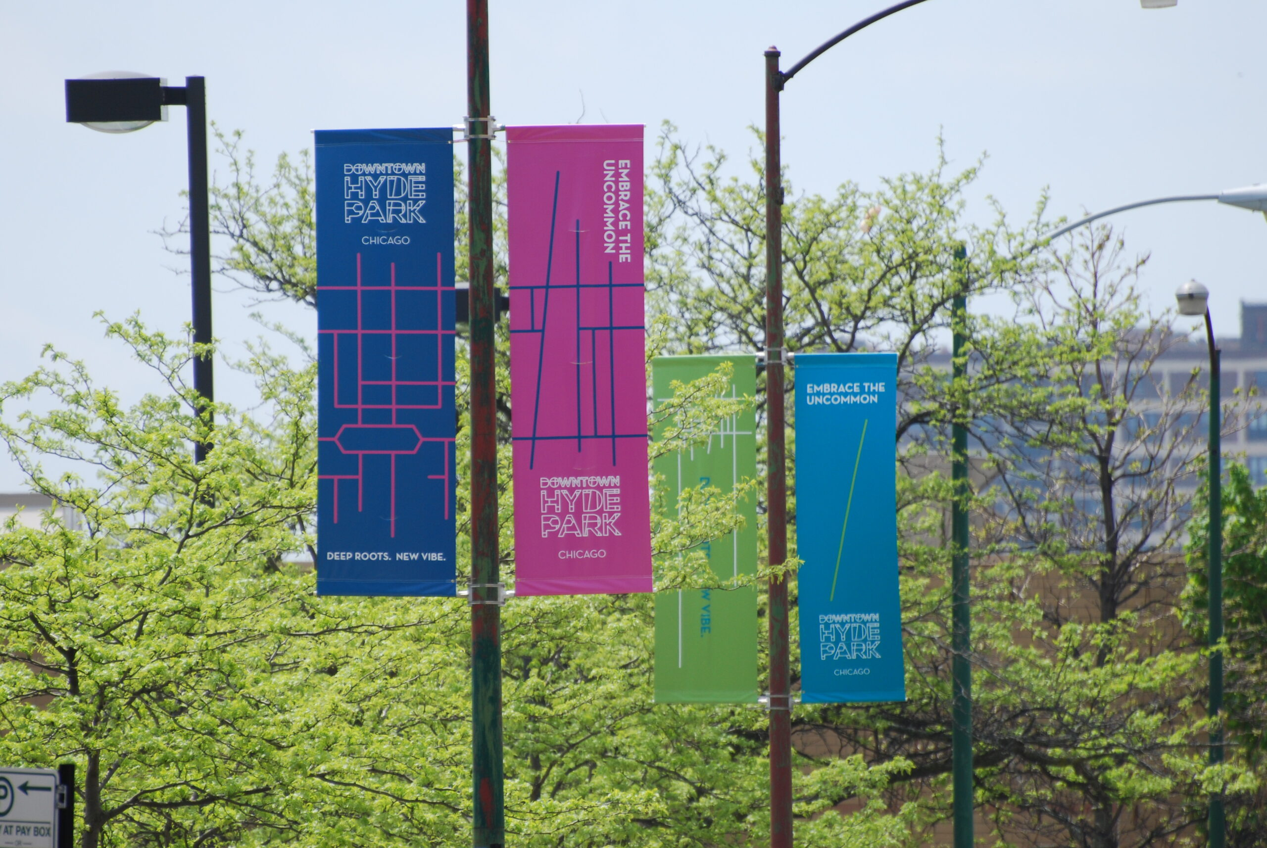 The banners with Downtown Hyde Park's visual identity and branding, lining the lampposts on 57th Street